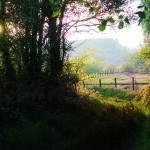 Stunning walks from this dartmoor holiday cottage in Lustleigh