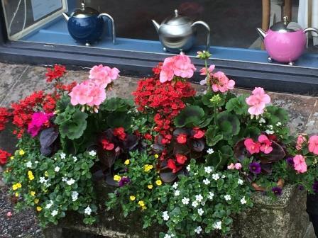 Lustleigh's Primrose Tea Rooms opposite the Dartmoor Holiday Cottage