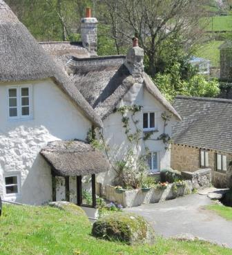 Thatched Dartmoor Holiday Cottage
