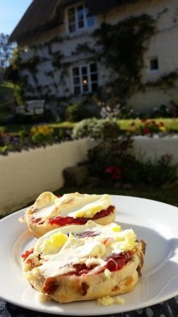 Devon Cream Tea in the garden of the Dartmoor Holiday Cottage