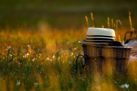 Picnic scene on Dartmoor