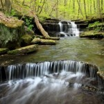 The popular Becky Falls is only 4 miles from the Dartmoor Holiday Cottage