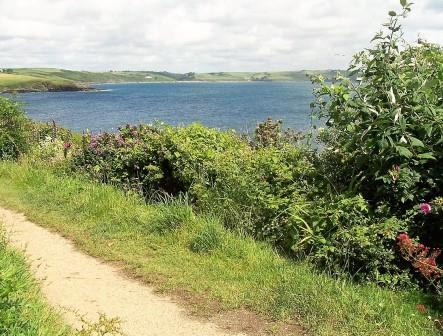 A Devon holiday offers amazing coastal walks