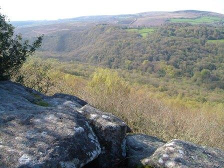View from Lustleigh Cleave, Dartmoor