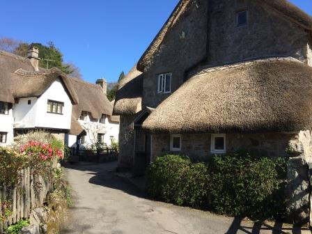 Wreyland nearby this dartmoor holiday cottage in lustleigh