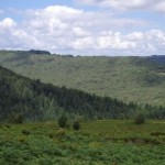 View of Dartmoor near our self catering accommodation