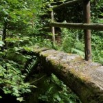 A fine old wooden bridge in the woods near the Dartmoor Holiday Cottage
